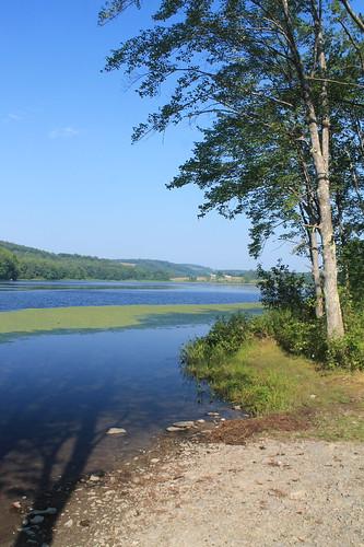 lakeshore andyarthur longpondstateforest