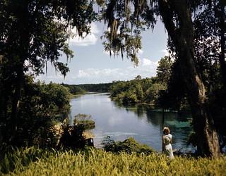 Rainbow Springs near Dunnellon, Florida