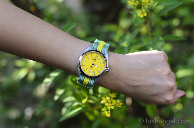 veloci_yellow_dial