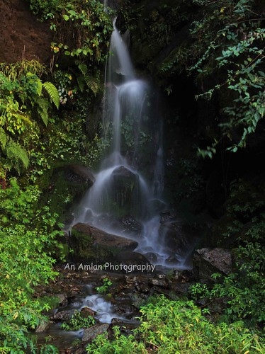 An unknown waterfall between Rimbick and Srikhola