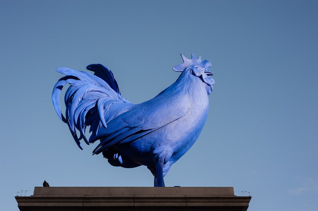 Two birds on the fourth plinth