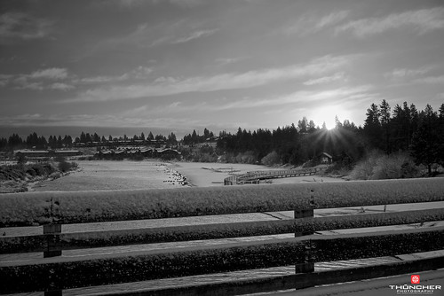 winter bw snow ice nature monochrome oregon centraloregon sunrise landscape outdoors blackwhite northwest bend sony scenic fullframe fx canadageese waterscape deschutesriver a7r zeiss35mmf28lens thephotographyblog sonya7r