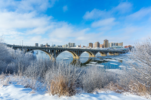 city travel bridge blue winter sky urban white snow canada cold reflection building tree ice nature water skyline architecture skyscraper river landscape hotel town frozen downtown frost cityscape hoarfrost structure photoblog saskatoon bessborough saskatchewan
