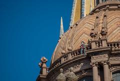 Una manita de gato a la catedral ①