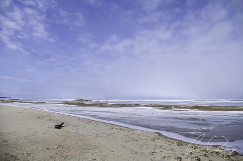 Frozen Tide