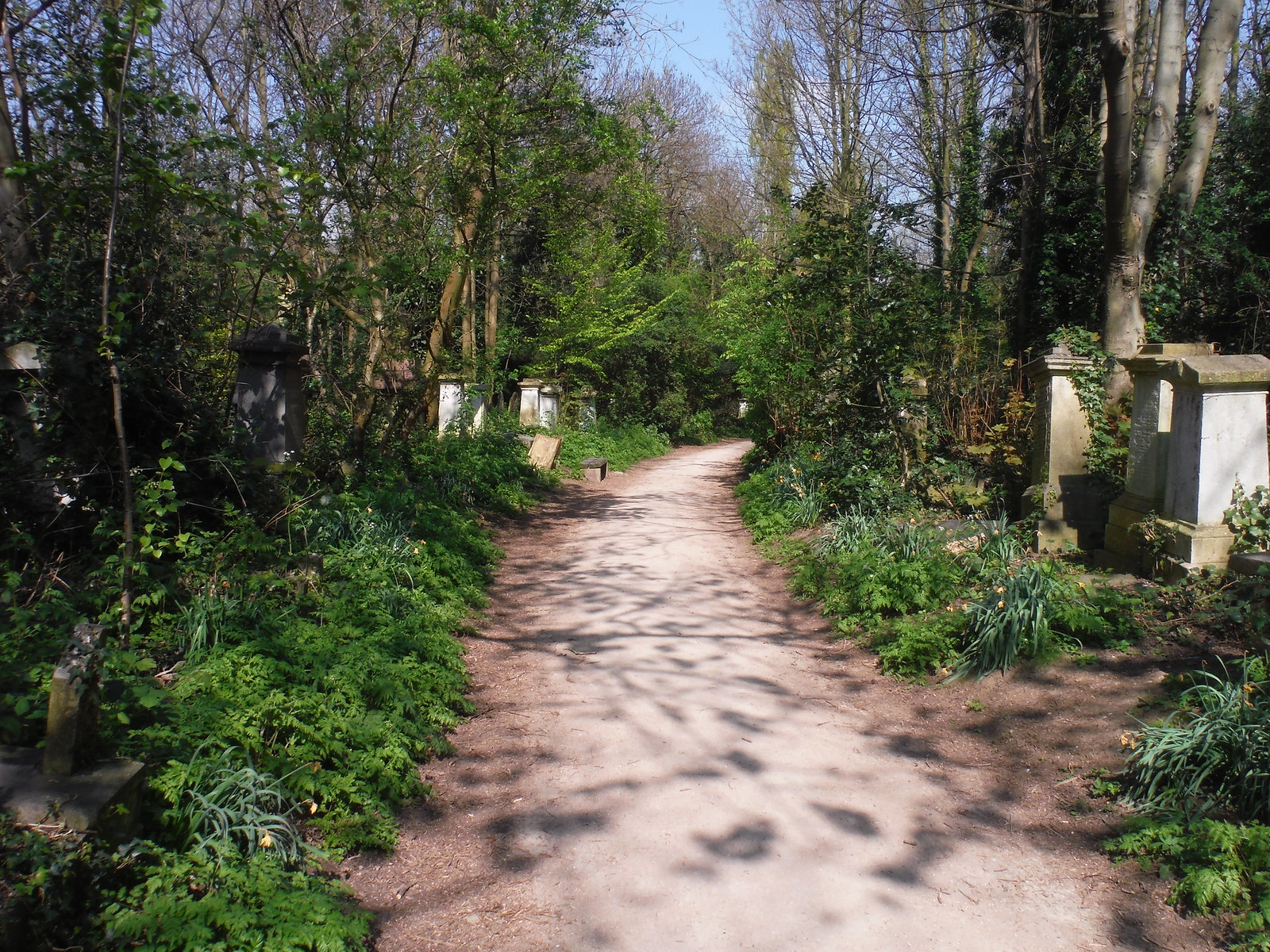 Abney Park Cemetery (IV) SWC Short Walk 26 - Woodberry Wetlands (Stoke Newington Reservoirs)