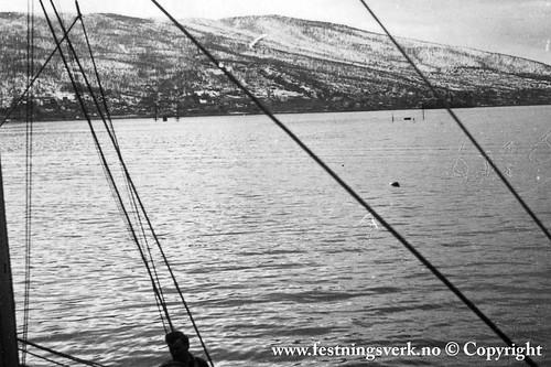 Narvik (2110)