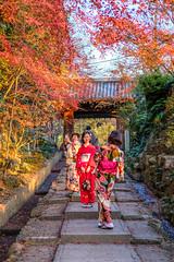 Picturesque garden near Kotaiji Tenmangu - selfie opportunity at all age!