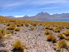 Altiplano - Chili