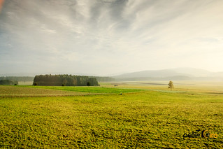 Morning Fog over The Rolling Hills in the Czech Republic