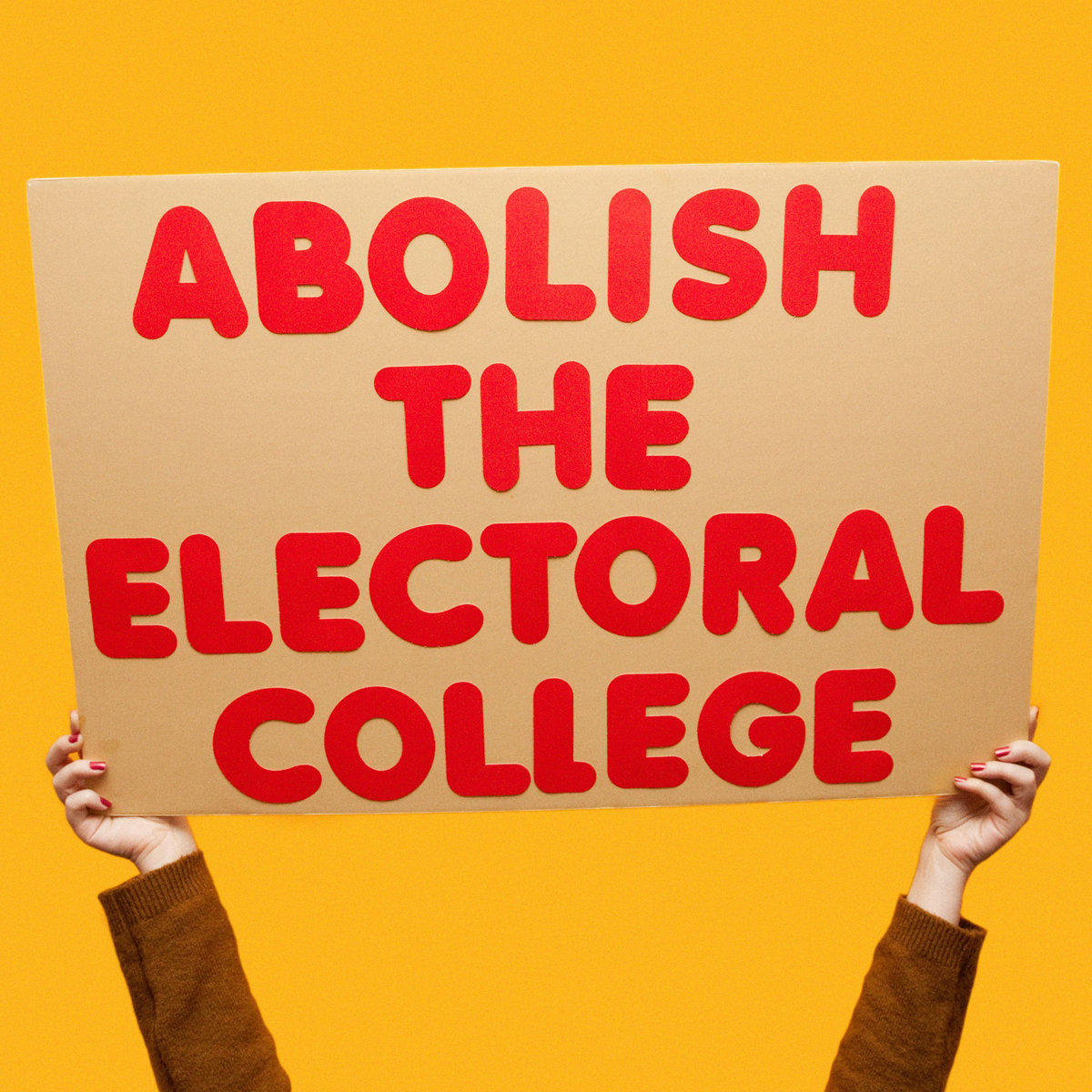 45 Protest Signs_Brandon and Olivia Locher_21_Abolish The Electoral College