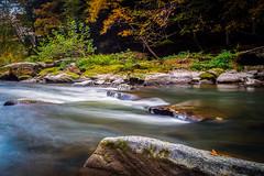Slippery Rock Creek 1