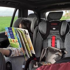 Road Reading? 😂 #yeahright #maksymdaveed