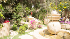Inside a partition of a landscaping company in Egypt's flowers show 2017