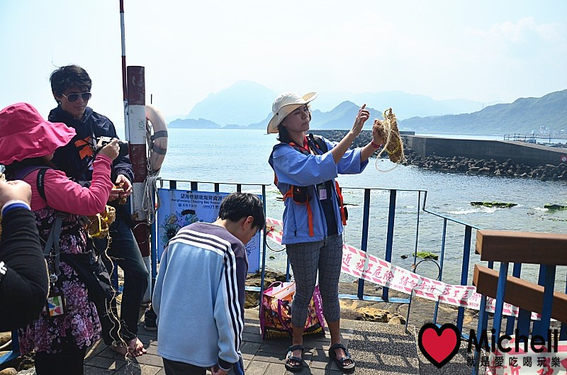 八斗邀/潮境公園/潮間帶