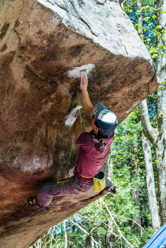 Up in Smoke V7