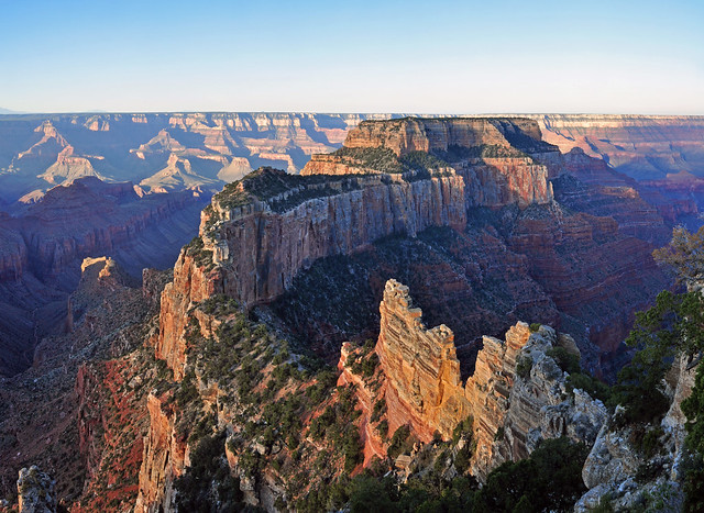 Grand Canyon National Park: North Rim: Muted Sunrise From Cape Royal 0163