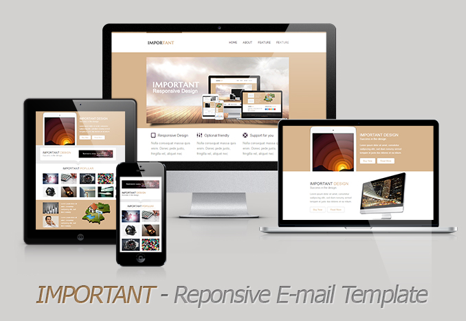 IMPORTANT- Responsive Email Template