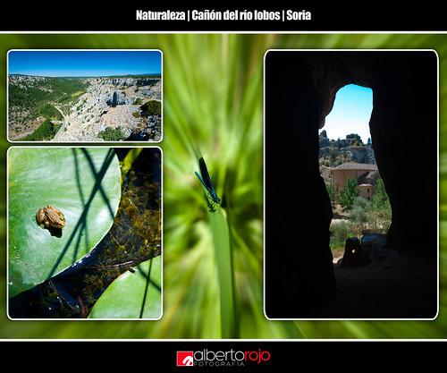 Naturaleza en el Cañón del río Lobos by alrojo09