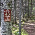 Kilomètre 43