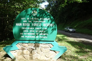 Main Ridge Forest Reserve