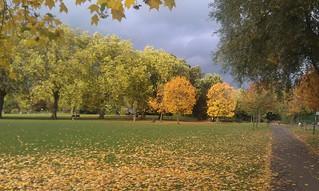 Priory Park N8
