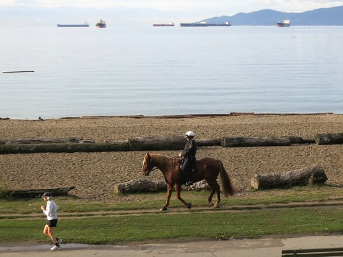 Horseback beach patrol