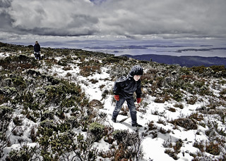 Walking the Zig-Zag Track #3, Mount Wellington