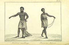 """British Library digitised image from page 356 of """"Afrika en deszelfs Bewoners, etc [Intended as part of a continuation of E. A. W. von Zimmerman's work: 'De Aarde en hare Bewoners.']"""""""