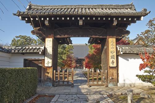 【写真】2013 紅葉 : 妙顕寺/2020-11-01/IMGP4139