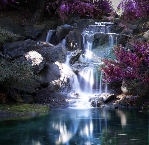park longexposure canada nature water vancouver waterfall movement walks bc britishcolumbia falls waterfalls shutter wilderness hikes slowshutterspeed vandusenbotanicalgarden touristsites vancouversites