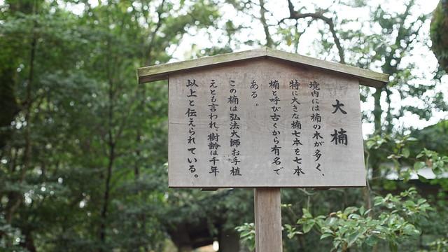 Jingu_5