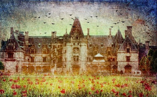 Biltmore Estate...done for Sunday.................HSS