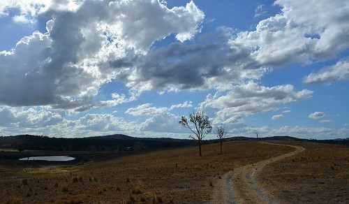 trees sky clouds landscape countryside track australia pasture drought cumulus queensland australianlandscape cloudscape gravelroad sequeensland farmdam australianweather albertvalley