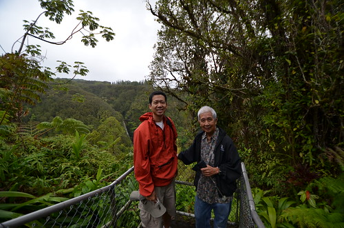In Akaka Falls Park