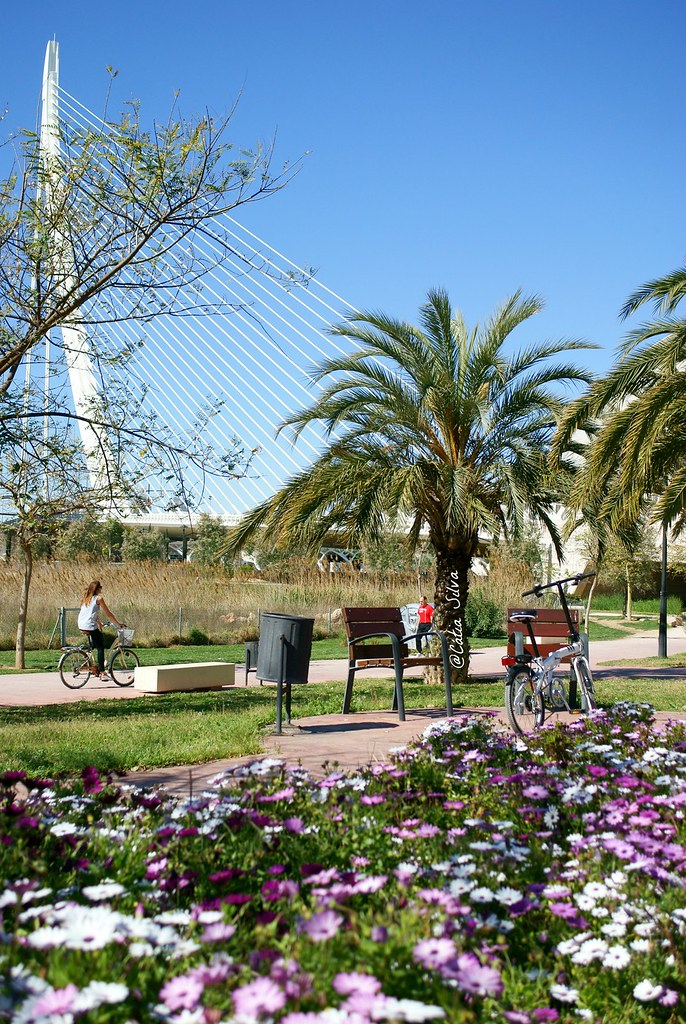 Valencia_Primavera_ Jardines del Turia (22)