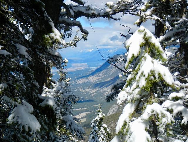 Swansea Mountain April Summit, Nikon COOLPIX AW100