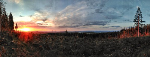 Sunset landscape. Seen while trail running. #sunset #sundown #trailrunning #trailrun #view #landscape #cloudscape #alpenglow #woods #forest #meadow #clearcut #forestry #beavercreekoregon #panorama