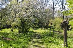 Siegerpark