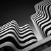 Zebra Building by TS446Photo