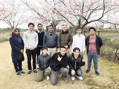 20170409 Cherry blossom with New students
