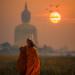 Monk walking dhutanga