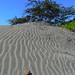 Striped sand dune