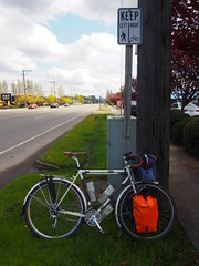 Pacific Highway Bicycle Lane