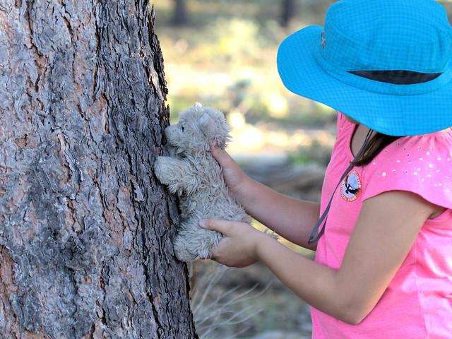 Mimi sniffs bark 20130618