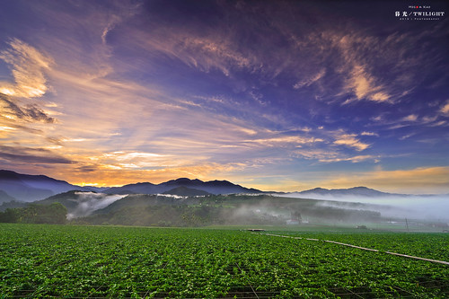 nature beauty field fog sunrise photography landscapes long exposure glow village farm taiwan 南投 台灣 ultrawide 風景 afs puli 埔里 seaofclouds nantou 雲海 日出 blackcard 田園 霧 superwide 黑卡 2013 大坪頂 28g 農莊 1424mm mosonkuo