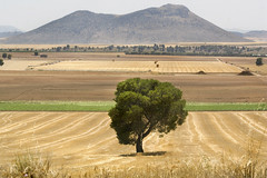 La Toscana (Andalusia)