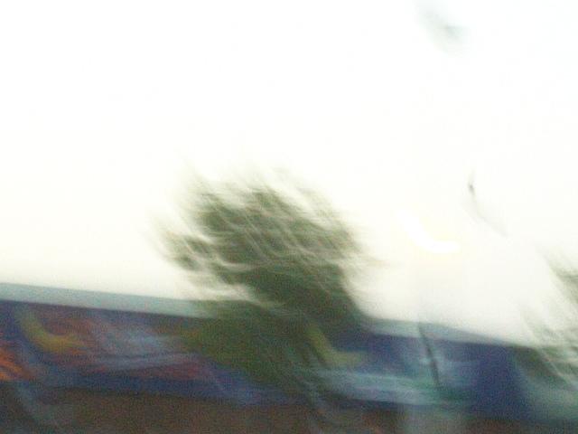 PIC_1157