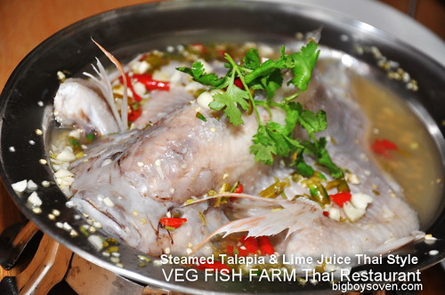 Veg Fish Farm Thai Restaurant Hulu Langat 12