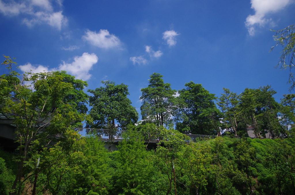 台中 秋紅谷
